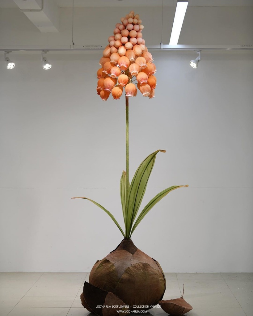 Cette image a un attribut alt vide; le nom du fichier est lodharlia-ecoflowers-1.jpg