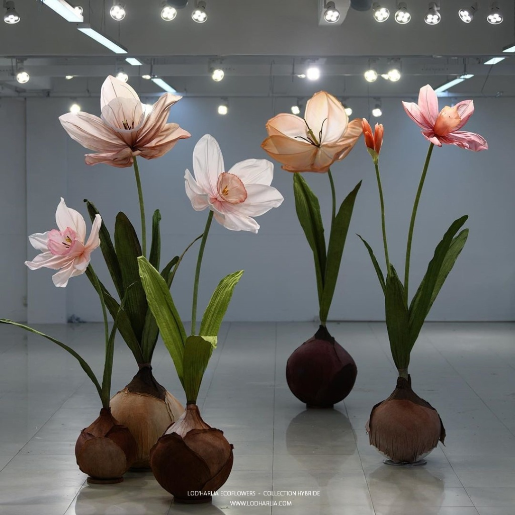 Cette image a un attribut alt vide; le nom du fichier est lodharlia-ecoflowers-3.jpg